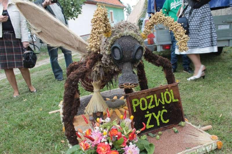 pz3.JPG